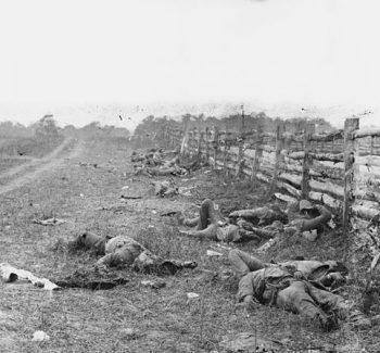 bodies on the antietam battlefield